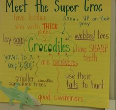 Meet the Super Croc: anchor chart about crocodile