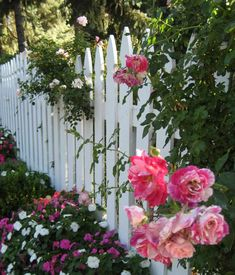 Fences can define a garden's boundaries while at the same time stylize the setting as Modern, Victorian, or European, Cottage, etc.