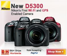 Nikon D5300 Experience - Take control of your D5300 and the images you create!