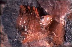 Sarkinite, synonymous with chondrarsenite and polyarsenite, is a mineral with formula Mn2(AsO4)(OH). The mineral is named for the Greek word σάρκιυος, meaning made of flesh, for its red color and greasy luster. The mineral was first noted in Sweden in 1865 as chondrarsenite, though not identified as Sarkinite until 1885.