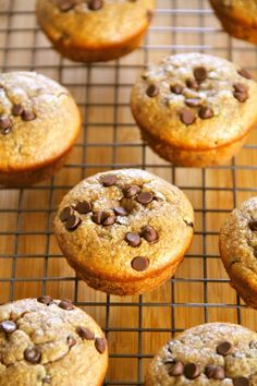 Flourless Chocolate Chip Almond Butter Muffins — gluten-free, sugar-free, dairy-free, and oil-free. Recipe at runningwithspoons… . Gluten Free Muffins, Gluten Free Sweets, Healthy Muffins, Gluten Free Baking, Healthy Sweets, Dairy Free Recipes, Real Food Recipes, Dessert Recipes, Yummy Food