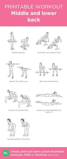 Fitness Articles Tips and Workouts: Middle and lower back: my visual workout created a. Fitness Workouts, At Home Workouts, Fitness Tips, Chest Workouts, Barbell Deadlift, Lower Back Exercises, Printable Workouts, Back And Biceps, Muscle Fitness