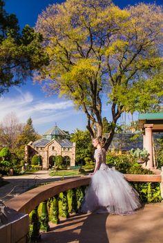 a view of the garden at Shepstone Gardens Grecian Wedding, Wedding Styles, Wedding Ideas, Ethereal, Garden Wedding, Wedding Engagement, Wedding Venues, Gardens, Wedding Photography