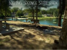 Boiling Springs State Park, Woodward, Oklahoma - lots of trails, wildlife and history. Several playgrounds for the kids a public swimming pool, cabin rentals, small lake for fishing and a fantastic public access golf course. Great place to hike, bike or get a little closer to nature with the family.