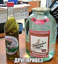 That's Quite a Pickle, Comrade… A Guide to Russian Food, Part 5 Funny Images, Funny Photos, Burn Meme, Russian Vodka, Russian Humor, V Instagram, Pinterest Memes, Pickle Jars, Kid Memes