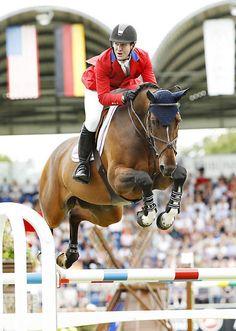 HH Azur - Mclain Ward (USA) Bay Mare (28/04/2006) - SBS (Belgian Sport Horse) Sion VD Zuuthoeve (Sir Lui VD Zuuthoeve) x Thunder VD Zuuthoeve