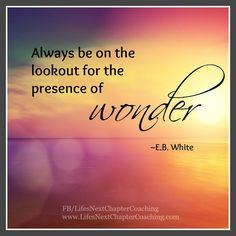 Always be on the lookout for the presence of wonder. Find more inspirational quotes at: https://www.facebook.com/LifesNextChapterCoaching Follow my blog on: http://lifesnextchaptercoaching.com/blog/