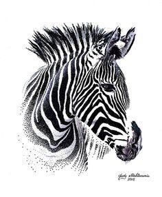 Zebra - Pointillism Art by Judy - Drawings & Illustration, Animals, Birds, & Fish, Zebras - ArtPal Dotted Drawings, Dark Art Drawings, Ink Pen Drawings, Zebra Drawing, Black Pen Drawing, Realistic Animal Drawings, Lion Sketch, Stippling Art, Zebra Art