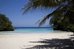 What to know about beaches / Jamaica, like the rest of the Caribbean is known for its white sand beaches.  Made mainly from calcium carbonate, the skeletal remains of coral, these beaches are big attractions to locals and visitors alike. | Experience Jamaique Negril, Montego Bay, Rose Hall, Ocho Rios, Kingston, Portland, Carbonate De Calcium, Treasure Beach, Beach Tops