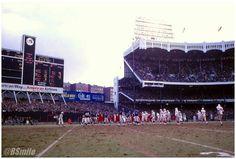 New York Giants. New York Stadium, New York Football, Giants Football, Stadium Tour, Yankee Stadium, Football Stadiums, New York Yankees, School Football, New York Giants Logo