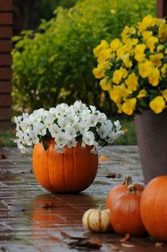 Pumpkins make fun containers for autumn flowers. To decorate your porch or deck for fall, fill a hollowed-out pumpkin with colorful pansies. We'll show you how at The Home Depot's Garden Club.