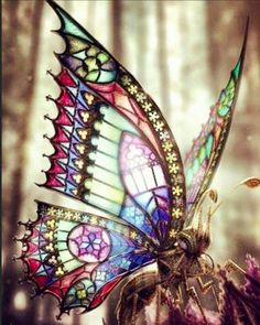 Mariposas Más This is art, not a real butterfly. Most Beautiful Butterfly, Beautiful Bugs, Butterfly Kisses, Butterfly Art, Butterfly Painting, Beautiful Creatures, Animals Beautiful, Art Papillon, Butterfly Pictures