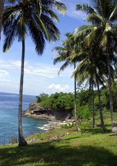 #Ambon, Pulau Maluku, Indonesia