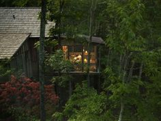 CABIN  |  Balsam Mountain Preserve love that this is just up the road from me-love the sunroom in the middle of the woods idea!