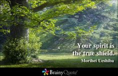 Your spirit is the true shield. - Morihei Ueshiba
