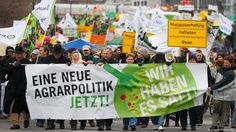"#GERMANY #SWD #GREEN2TAY Why Germans are demanding a shift in agriculture DW looks at why people are taking to the streets in Germany to demand an ""Agrarwende"" - or agricultural transformation. Issues include health concerns, protection of animals, and pollution impacts on water and climate."