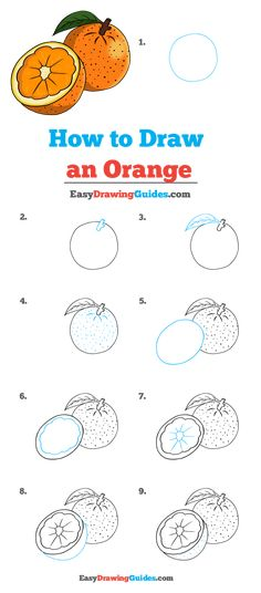 Learn to draw an orange. This step-by-step tutorial makes it easy. Kids and beginners alike can now draw a great orange. Drawing Tutorials For Kids, Art Drawings For Kids, Drawing For Kids, Easy Drawings, Art For Kids, Easy Art Projects, Craft Projects For Kids, Arts And Crafts Projects, Nature Drawing