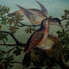 Old Oil Painting on Board/Birds by AntiqueInvestments on Etsy, $75.00