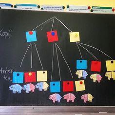 """Tafelbild zur Geschichte vom """" Zoo der Streifentiere"""". Ich hab zusammen mit den Schülern das Baumdiagramm erstellt und somit die Aufgabe ausgewertet. Ein Baumdiagramm zum Hund hatten wir auch erstellt. (Aufgabe: Streifenschaf besteht aus 2 Teilen, die jeweils entweder rot, gelb oder blau sein können. Wie viele unterschiedliche Streifenschafe lassen sich daraus erstellen?) #klasse4 #lehrer #lehrerfreuden #lehrerin #grundschule #grundschullehrer #grundschullehrerin #school #primaryschool #i..."""