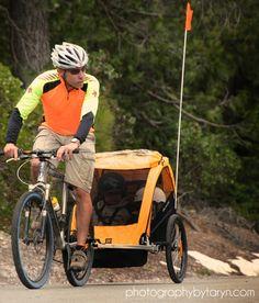 Burley Bee double bicycle trailer