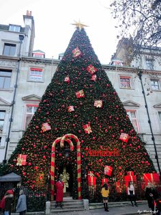 Oh Annabel's you're Santa! - Happy Christmas - Noel 2020 ideas-Happy New Year-Christmas Christmas Lights, Christmas Time, Christmas Decorations, Holiday Decor, Christmas Windows, Magical Christmas, Beautiful Christmas, Christmas Ideas, Christmas In Europe