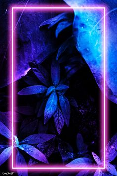 how do html color codes work Neon Backgrounds, Cute Wallpaper Backgrounds, Cute Wallpapers, Smoke Wallpaper, Lip Wallpaper, Love Background Images, Flower Background Wallpaper, Tropical Frames, Neon Jungle