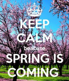 KEEP CALM because SPRING IS COMING. Another original poster design created with the Keep Calm-o-matic. Buy this design or create your own original Keep Calm design now. Keep Calm Posters, Keep Calm Quotes, Keep Calm And Love, My Love, Best Quotes, Funny Quotes, Qoutes, Keep Clam, Keep Calm Signs