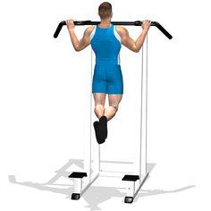 """Esercizio che coinvolge tutta la parte bassa e laterale della schiena, contribuendo alla cosi detta schiena a """"V"""", spalle, bicipiti, pettorali e in forma ridotta tricipiti. Usato sia per la forza che la massa del muscolo gran dorsale."""