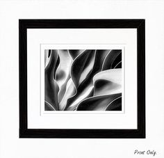 25x20 or smaller Wall Art, Home Decor, Abstract Plant Digital Artwork, FREE Shipping by Sensing Majesty - Rene' Comer