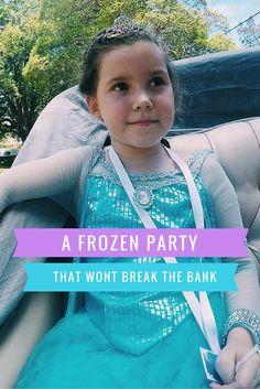 A Frozen Birthday Party that wont break the bank