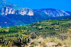 Countryside between Cefalu' and Campofelice, Sicily