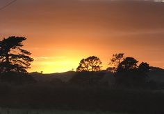Sunrises, New Zealand, Celestial, Outdoor, Breaking Dawn, Outdoors, Outdoor Games, The Great Outdoors, Sunrise