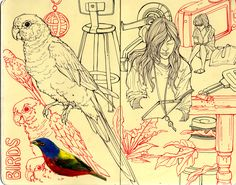 SKETCHBOOK- pájaro, chica