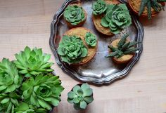 Pixel Whisk: Succulent Cupcakes