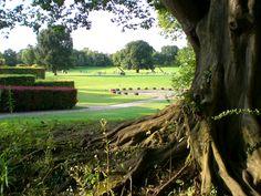 Luisen Park, Mannheim, Germany