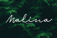 Malina – Pixelify