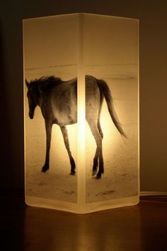 Wild Horse Photolamp by redsonjadesigns on Etsy