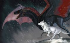 The Dragon and the Wolf by Galidor-Dragon on DeviantArt Drogon Game Of Thrones, Arte Game Of Thrones, Game Of Thrones Artwork, Game Of Thrones Dragons, A Dance With Dragons, Got Dragons, Mother Of Dragons, Fantasy Dragon, Fantasy Art