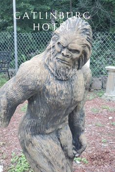 Looking for Bigfoot? Why don't you check out the Smoky Mountains in Gatlinburg, TN. Even if you are not looking for Bigfoot. Gatlinburg has some wonderful places that you just must see. This small mountain resort town has everything your family is looking for in a vacation.