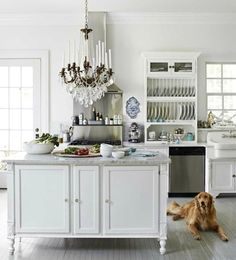 Designer Annie Brahler's Illinois Kitchen Nick,  I love the plate rack.  Either in place of a plate drawer - or- in conjunction with.  What's your thoughts?