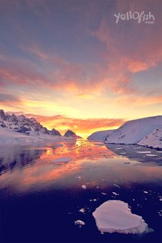 #sunsets in #antarctica are THE BESST.