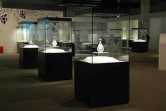 museum display case - Google Search