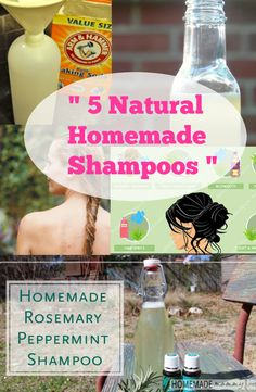 Do you want long, gorgeous hair that makes you stand out in the crowd? Get the hair you've always wanted with these easy to do homemade shampoos. 1.  Basic Shampoo Ingredients: 1/4 cup water 1/4 cu…