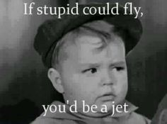 If stupid could fly...