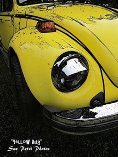 Vw Art Vw Photography Volkswagen Volkswagen Bug by SuePetriPhotos, $20.00