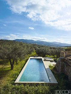 Groves of olive trees and wildflowers serve as a backdrop for a minimalist lap pool at a farm complex restored by architect Patrizia Sbalchiero in the Sicilian town of Chiaramonte Gul, known for its production of olive oil and wine.