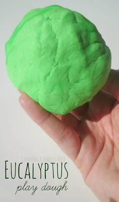 Eucalyptus play dough recipe- helps open up the airways and sooth sick kids during the Winter months, and all while they PLAY!