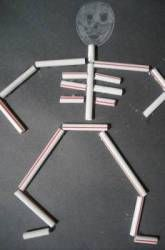 Activities: Make A Straw Skeleton