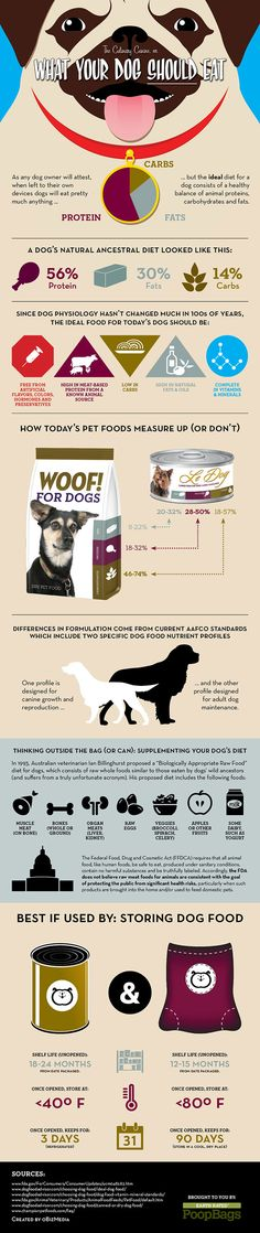 Dog food - 'What Your Dog Should Eat' #infographic #dogs
