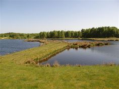 Stoneyfield Lochs Trout Fishery, Invergordon - stocked rainbow trout. Tel: 01349 852632.